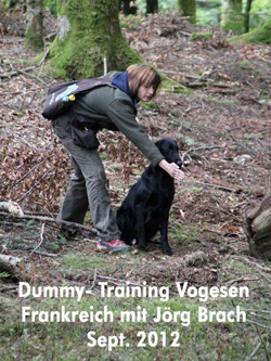 Dummy-Training